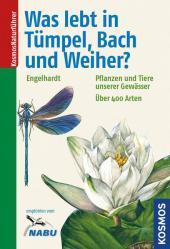 Was lebt in Tümpel, Bach und Weiher? Cover