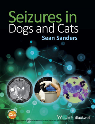 Seizures in Dogs and Cats