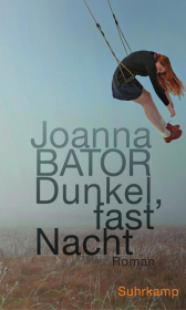 Dunkel, fast Nacht Cover