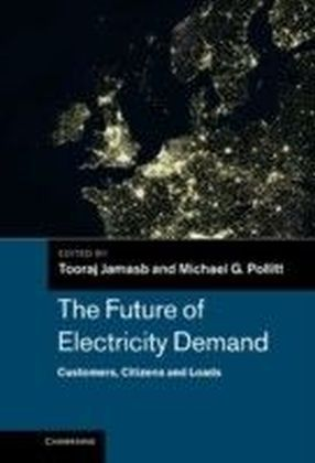 Future of Electricity Demand