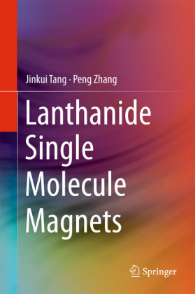 Lanthanide Single Molecule Magnets