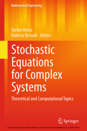 Stochastic Equations for Complex Systems
