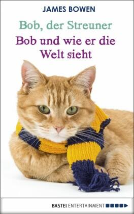 Bob, der Streuner - Bob und wie er die Welt sieht