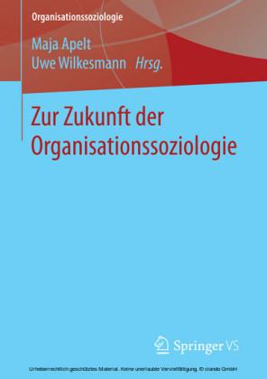 Zur Zukunft der Organisationssoziologie