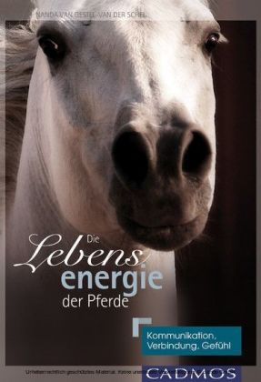 Die Lebensenergie der Pferde