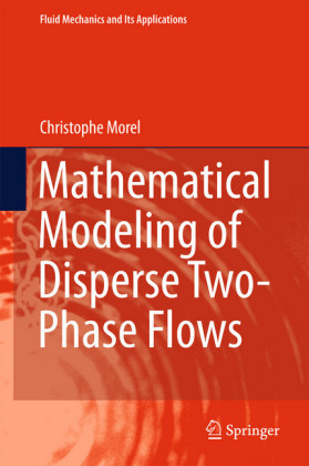 Mathematical Modeling of Disperse Two-Phase Flows