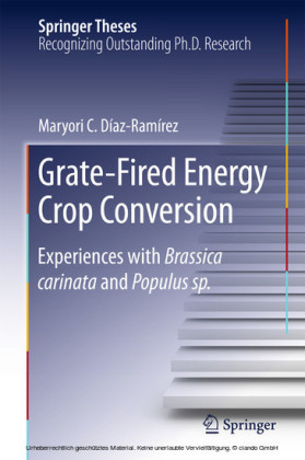 Grate-Fired Energy Crop Conversion