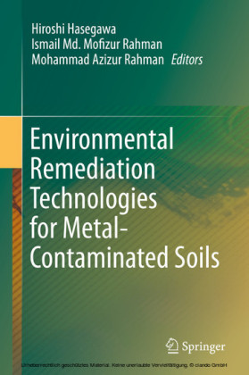 Environmental Remediation Technologies for Metal-Contaminated Soils
