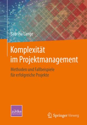 Komplexität im Projektmanagement