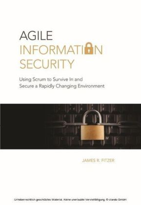 Agile Information Security