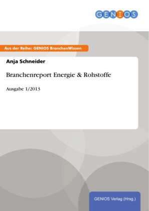 Branchenreport Energie & Rohstoffe