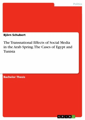 The Transnational Effects of Social Media in the Arab Spring. The Cases of Egypt and Tunisia