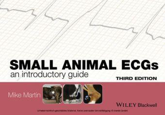 Small Animal ECGs