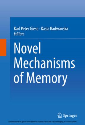 Novel Mechanisms of Memory