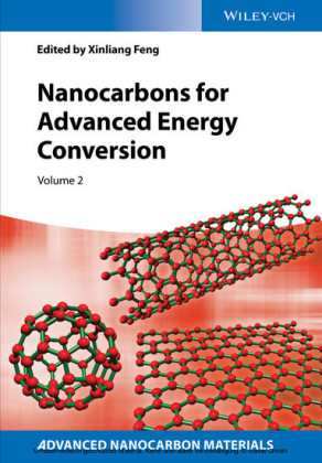 Nanocarbons for Advanced Energy Conversion