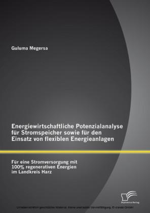 Energiewirtschaftliche Potenzialanalyse für Stromspeicher sowie für den Einsatz von flexiblen Energieanlagen: Für eine Stromversorgung mit 100% regenerativen Energien im Landkreis Harz