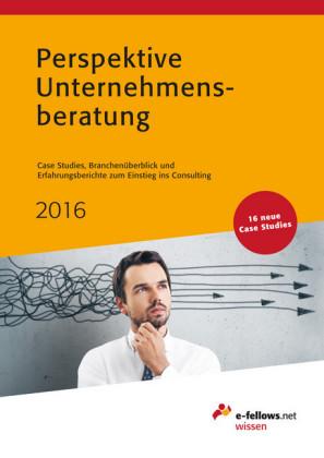 Perspektive Unternehmensberatung 2016