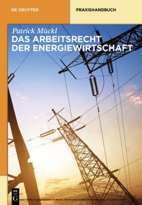 Das Arbeitsrecht der Energiewirtschaft