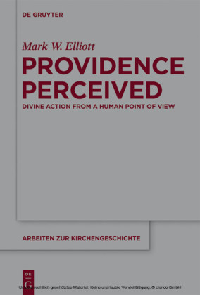 Providence Perceived