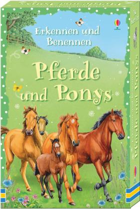 Erkennen und Benennen: Pferde und Ponys