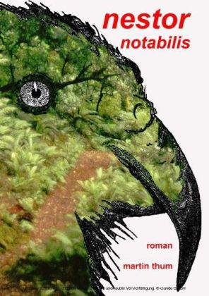 Nestor notabilis