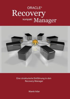 Recovery Manager Kompakt