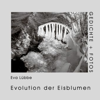 Evolution der Eisblumen