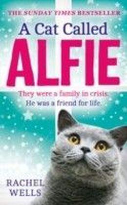 Cat Called Alfie