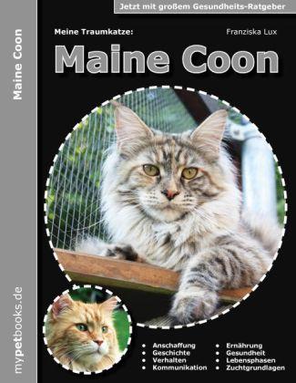Meine Traumkatze: Maine Coon