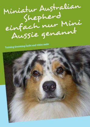 Miniatur Australian Shepherd