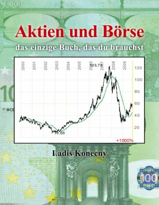 Der Aktionar Ebook