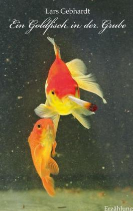 Ein Goldfisch in der Grube
