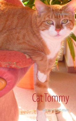 Cat Tommy