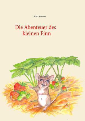 Die Abenteuer des kleinen Finn