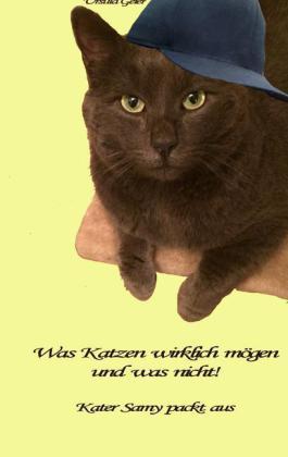 Was Katzen wirklich mögen und was nicht