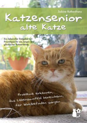 Katzensenior - alte Katze