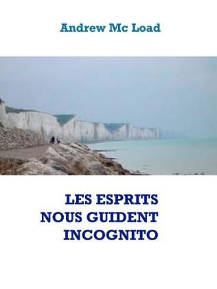 LES ESPRITS NOUS GUIDENT INCOGNITO