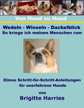 Von Hund zu Hund - Wedeln-Winseln-Dackelblick - So kriege ich meinen Menschen rum