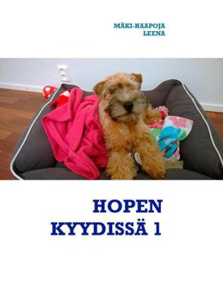 HOPEN KYYDISSÄ 1