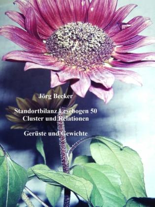 Standortbilanz Lesebogen 50 Cluster und Relationen