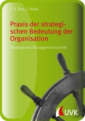 Praxis der strategischen Bedeutung der Organisation