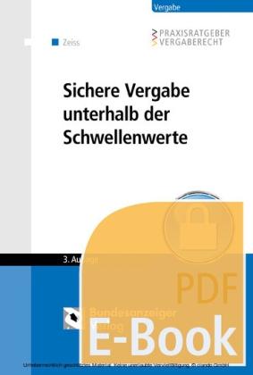 Sichere Vergabe unterhalb der Schwellenwerte (E-Book)
