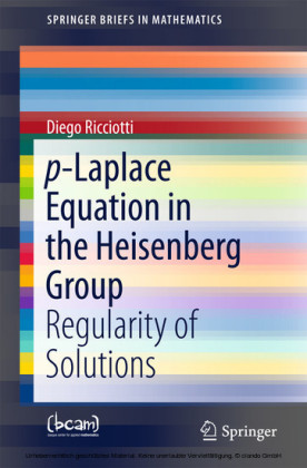 p-Laplace Equation in the Heisenberg Group