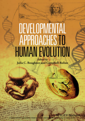 Developmental Approaches to Human Evolution