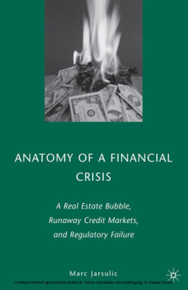 Anatomy of a Financial Crisis