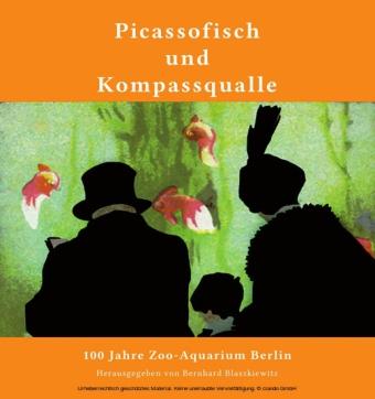Picassofisch und Kompassqualle
