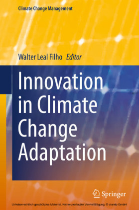 Innovation in Climate Change Adaptation
