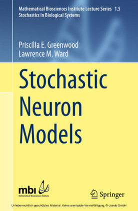 Stochastic Neuron Models