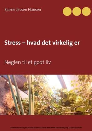 Stress - hvad det virkelig er