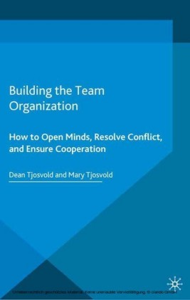 Building the Team Organization